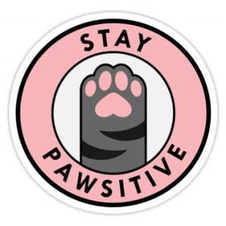 Стікер Stay Pawsitive