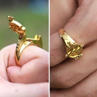 Перстень Флеша