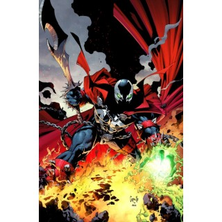 Spawn #300 Cover D