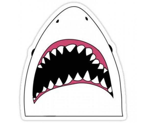 Стікер  Акула